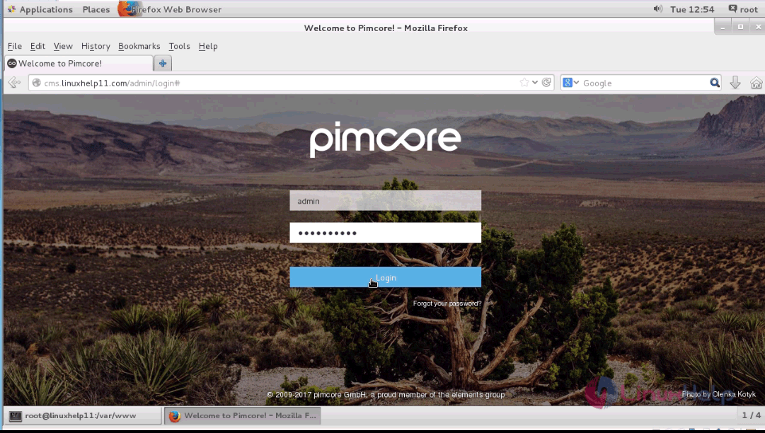 How to install Pimcore CMS with Nginx on CentOS 7